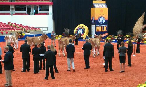 students judging at World Dairy Expo