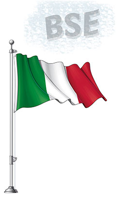 BSE and Italy