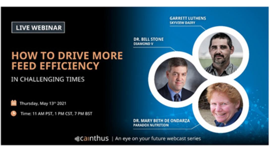 Cainthus webinar