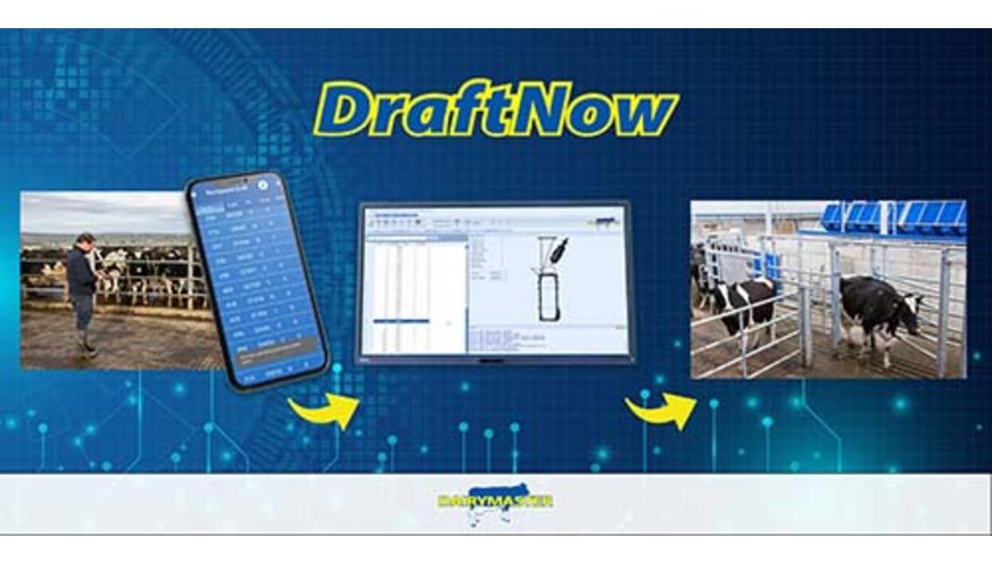 Dairymaster DraftNow System