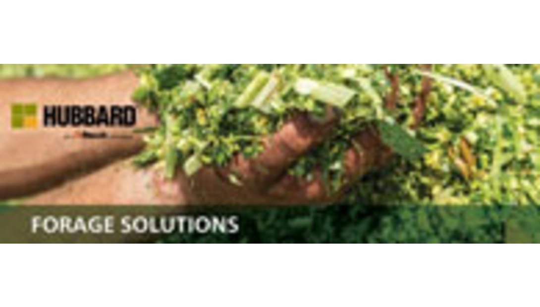 Hubbard-forage-solutions