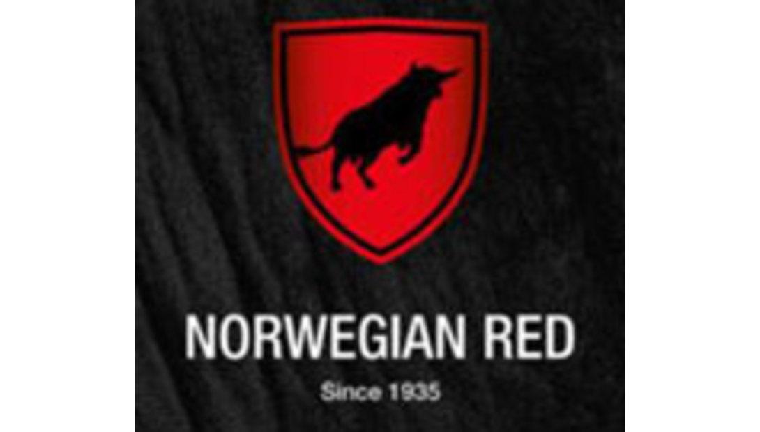 Norwegian-Red-logo