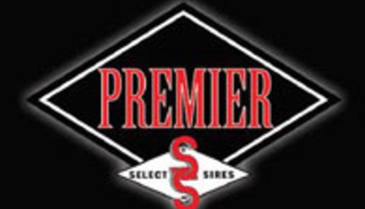 SelectSires-Premier