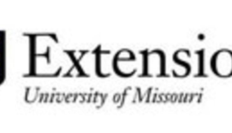 U-MO-Ext