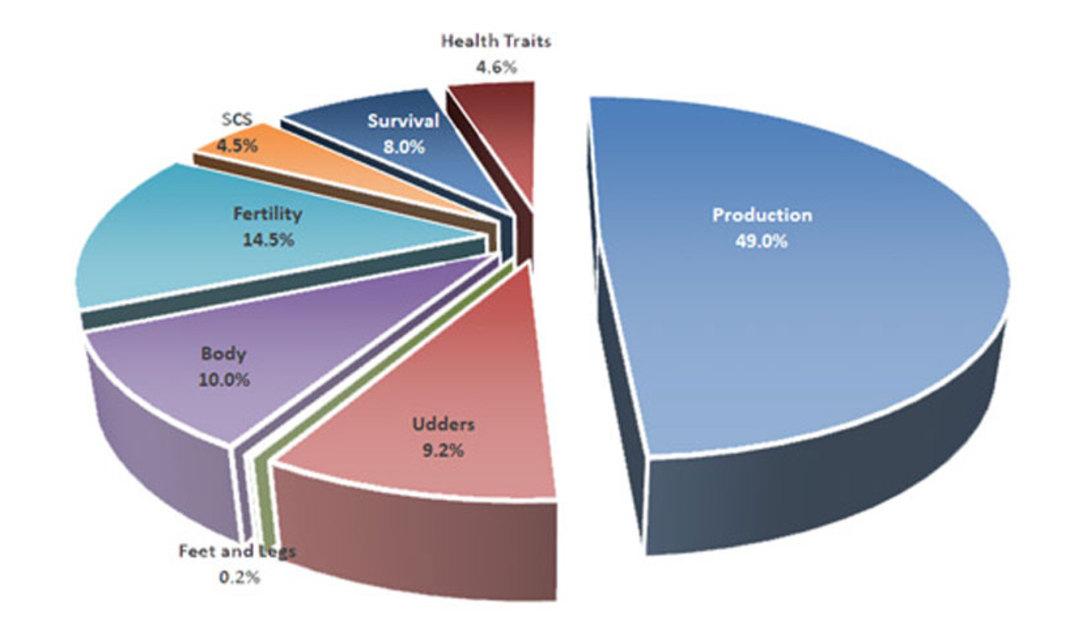 USJersey-traits.jpg-chart