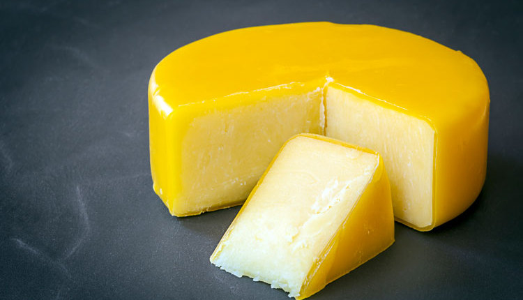 cheese-export_ph3