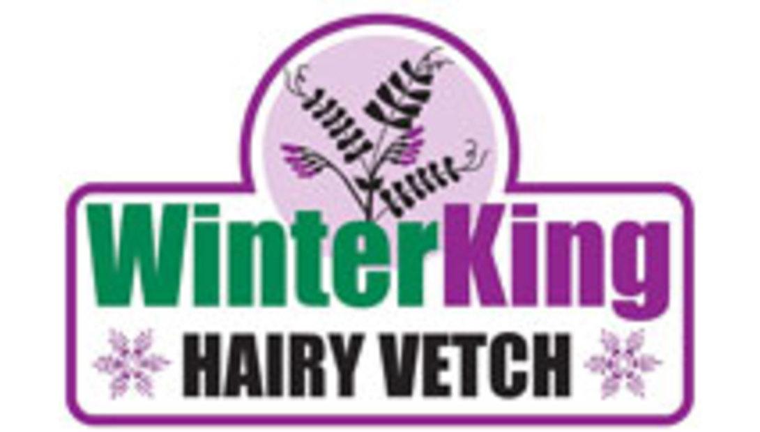 winterking.logo