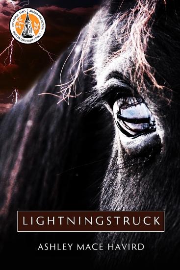 Lightningstruck