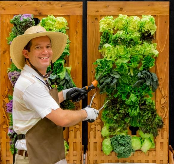 Garden Party First Vertical Salad Bar